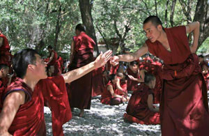 Sera Monastery's Monks Debating Activities