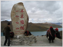 Lake Yamdrok Travel Photo,Tibet Highlights Tours