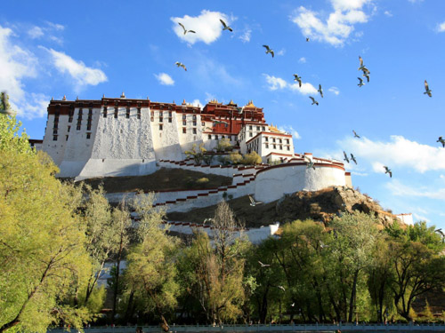 New Tibet Travel Insights: A Preview of Potala Palace